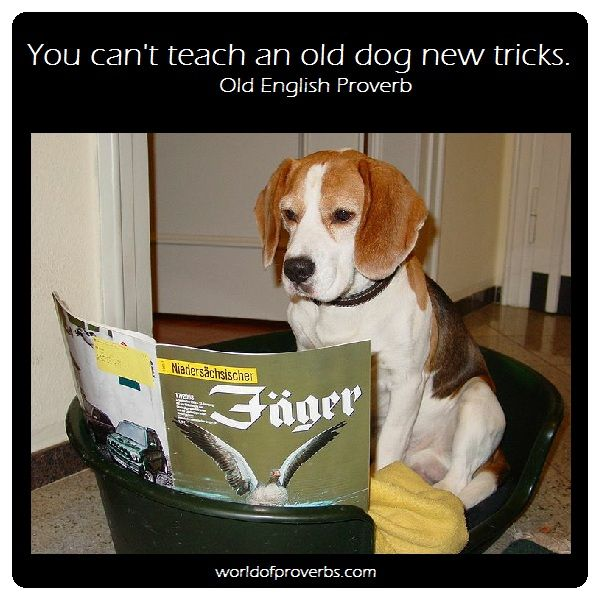 World Of Proverbs Famous Quotes You Can T Teach An Old Dog New