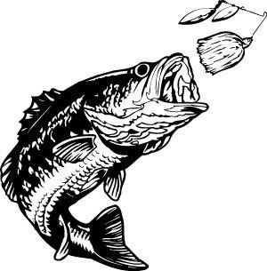 bass fishing clipart vector magz free download vector graphics rh pinterest com Halibut Line Drawing Halibut Fishing Art