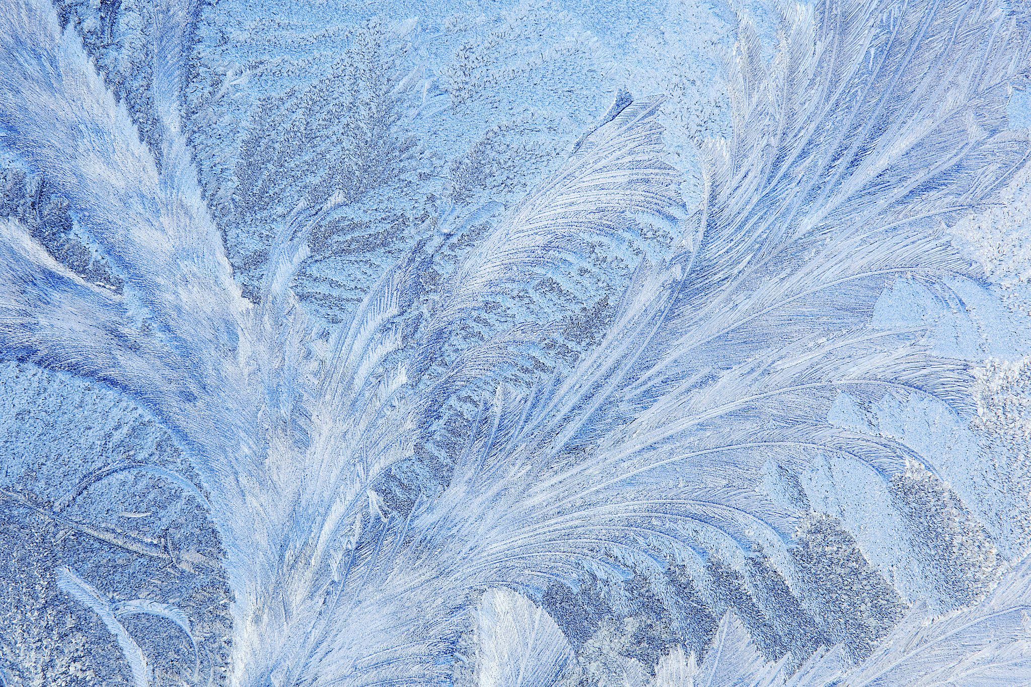 24+ Frost pattern ideas in 2021
