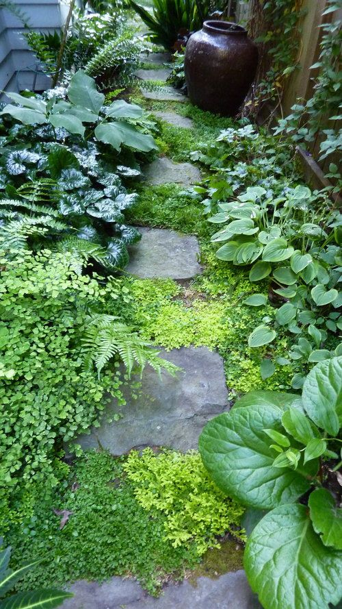 🌳 61 Magical-Secret Garden Paths | Pinterest | Portland oregon ...