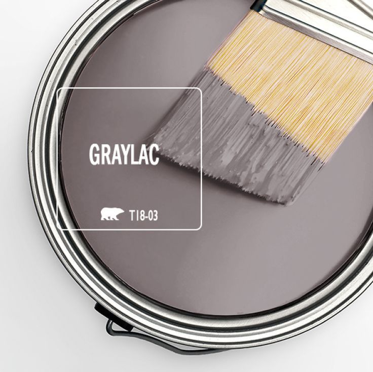 Trend Color Spotlight: Graylac images