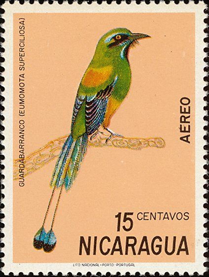 Turquoise-browed Motmot stamps - mainly images - gallery format