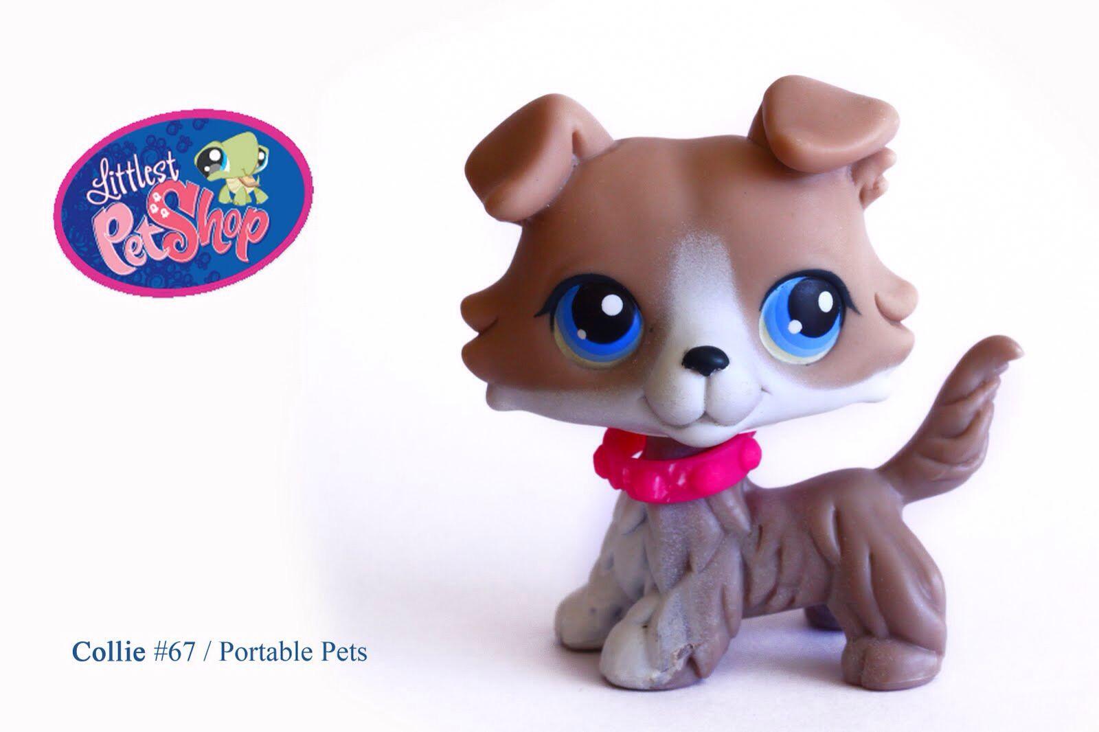 Littlest Pet Shop 67 Collie Lps Collies Lps Littlest Pet Shop Lps Pets