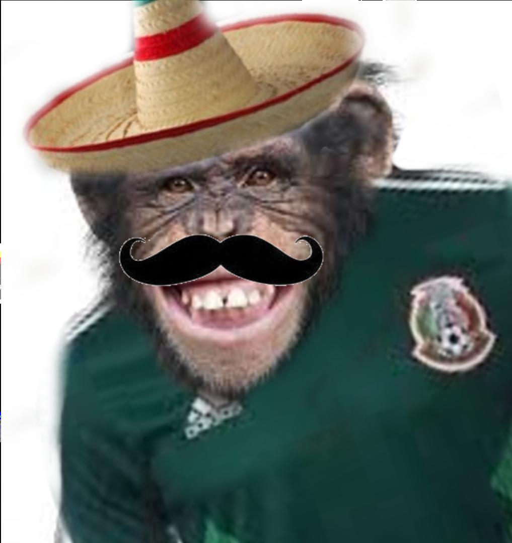 Mexicano Promedio Hats Sombrero