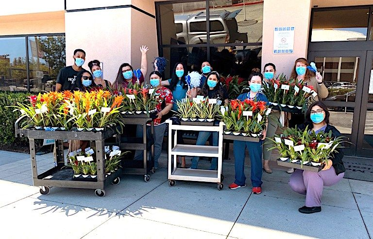 Grower donates plants to first responders in 2020 Plants