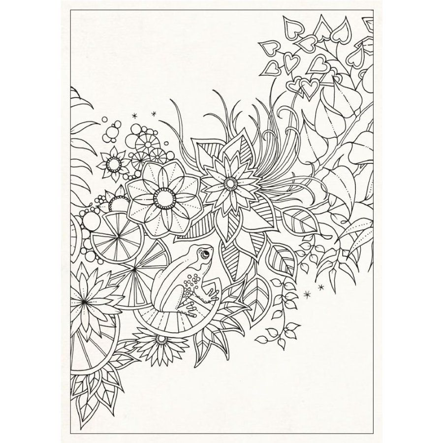 Secret Garden 20 Postcards Coloring Book