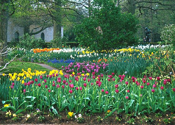 I Think The Bulb Garden Will Add The Perfect Amount Of Color To Our Front  Yard