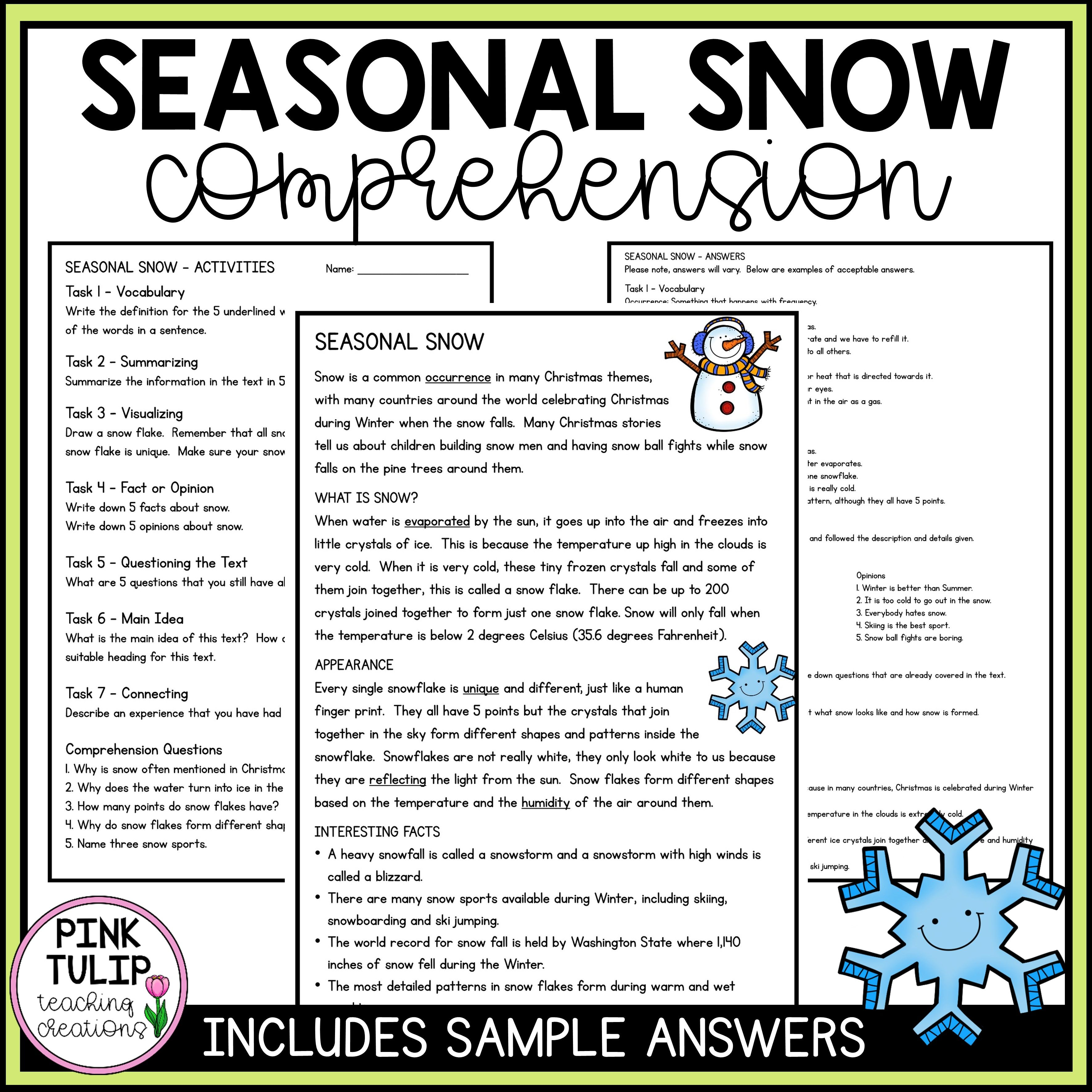 Seasonal Snow Christmas Comprehension