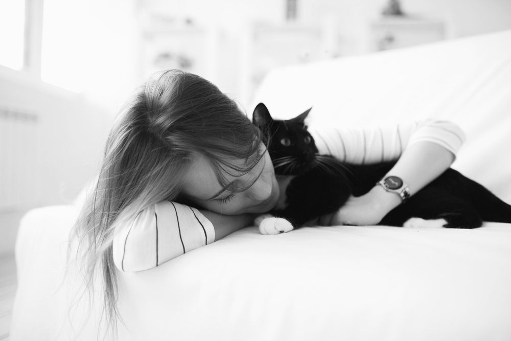 Get Your Apartment Ready to Bring Home a Kitten | Pets ...
