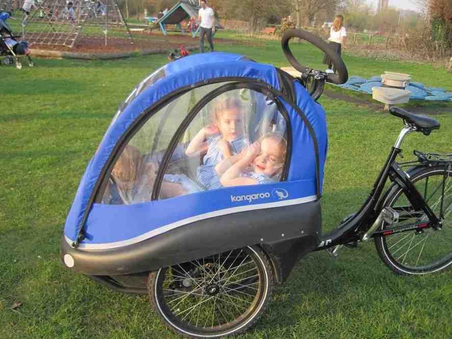Bike Trailer For 3 Kids Better Bike Trailer For Kids Pinterest