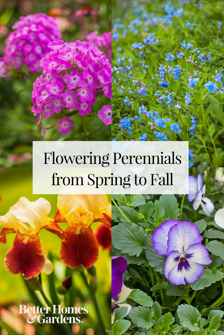 Flowering Perennials From Spring To Fall Perennials Gardens And