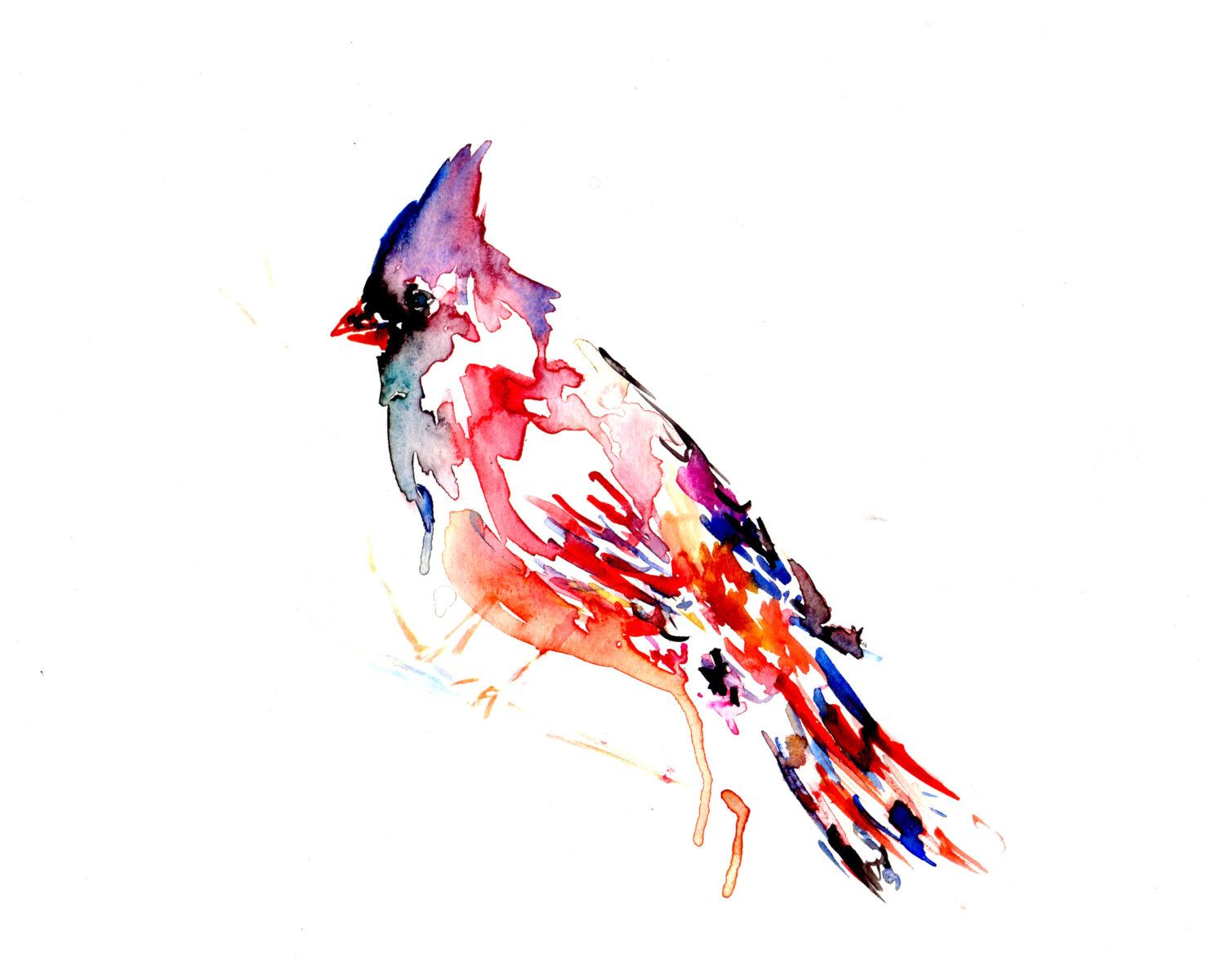 Cardinal Watercolor Painting Watercolor Print Of Bird Cardinal