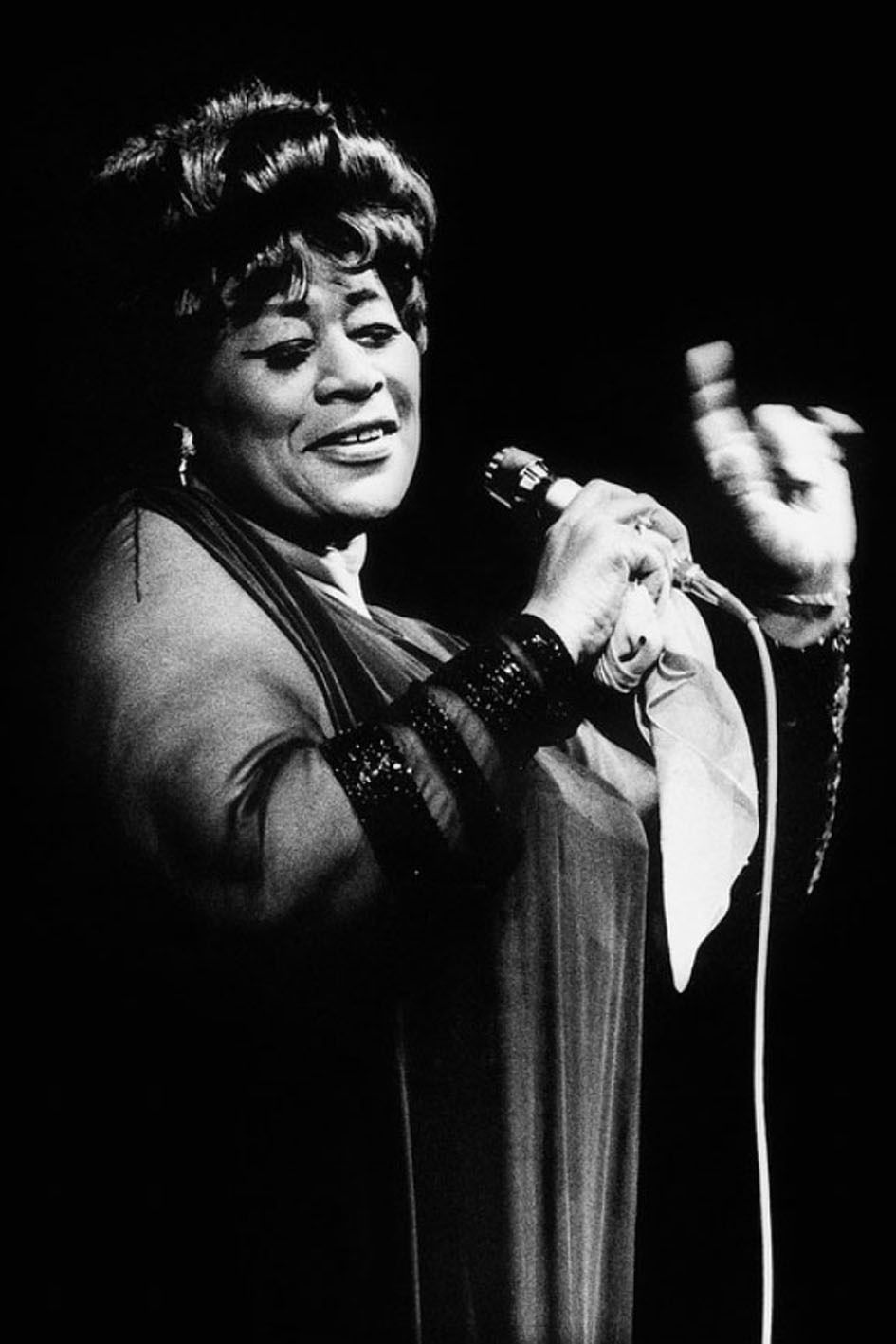 Ella, the Lady who sung the blues