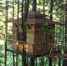 Treehouse Cabins In Oregon Shawna Granville