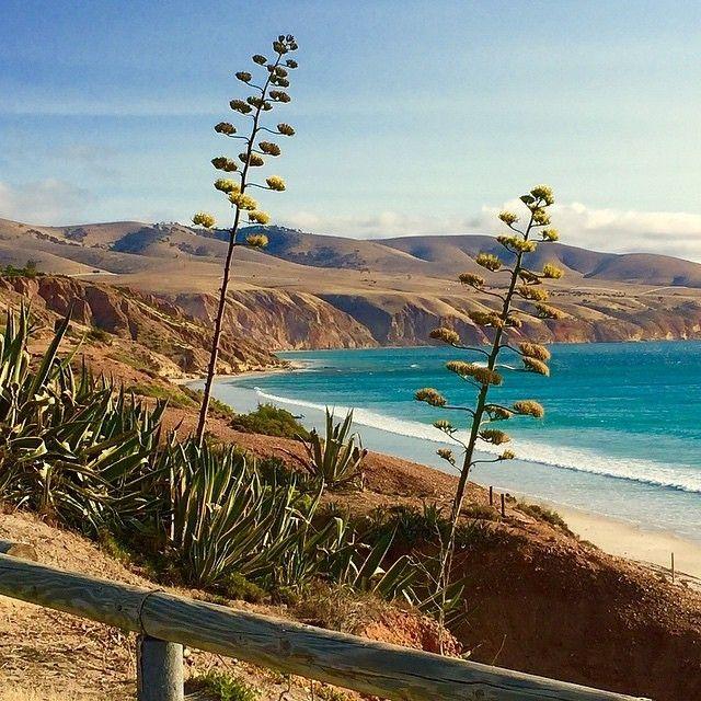 Cook Islands Beaches: Sellicks Beach. South Australia