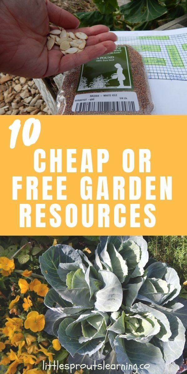 10 Ways to Find Cheap or Free Garden Resources is part of Container garden design, Container gardening, Frugal gardening, Sustainable garden, Gardening for kids, Garden - Gardening can be an expensive hobby or an inexpensive way to produce top quality food  Look for cheap or free garden resources and here's how