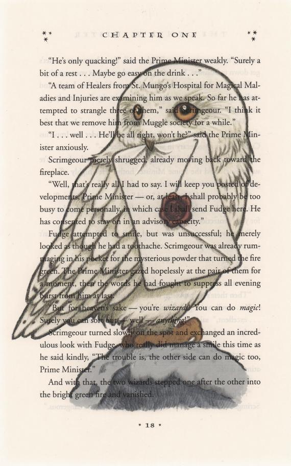 Hedwig Percy Jackson Harry Potter Ideen Fürs Zeichnen Harry