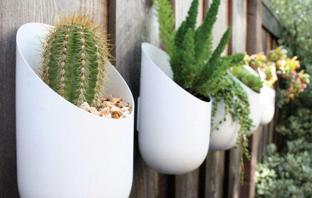 Home Design, Garden Design With Contemporary Style And Cactus Planters:  Awesome Small Garden Design