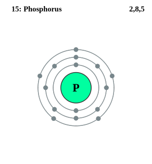 See the electron configuration of atoms of the elements diagram atom diagrams phosphorus atom urtaz Gallery