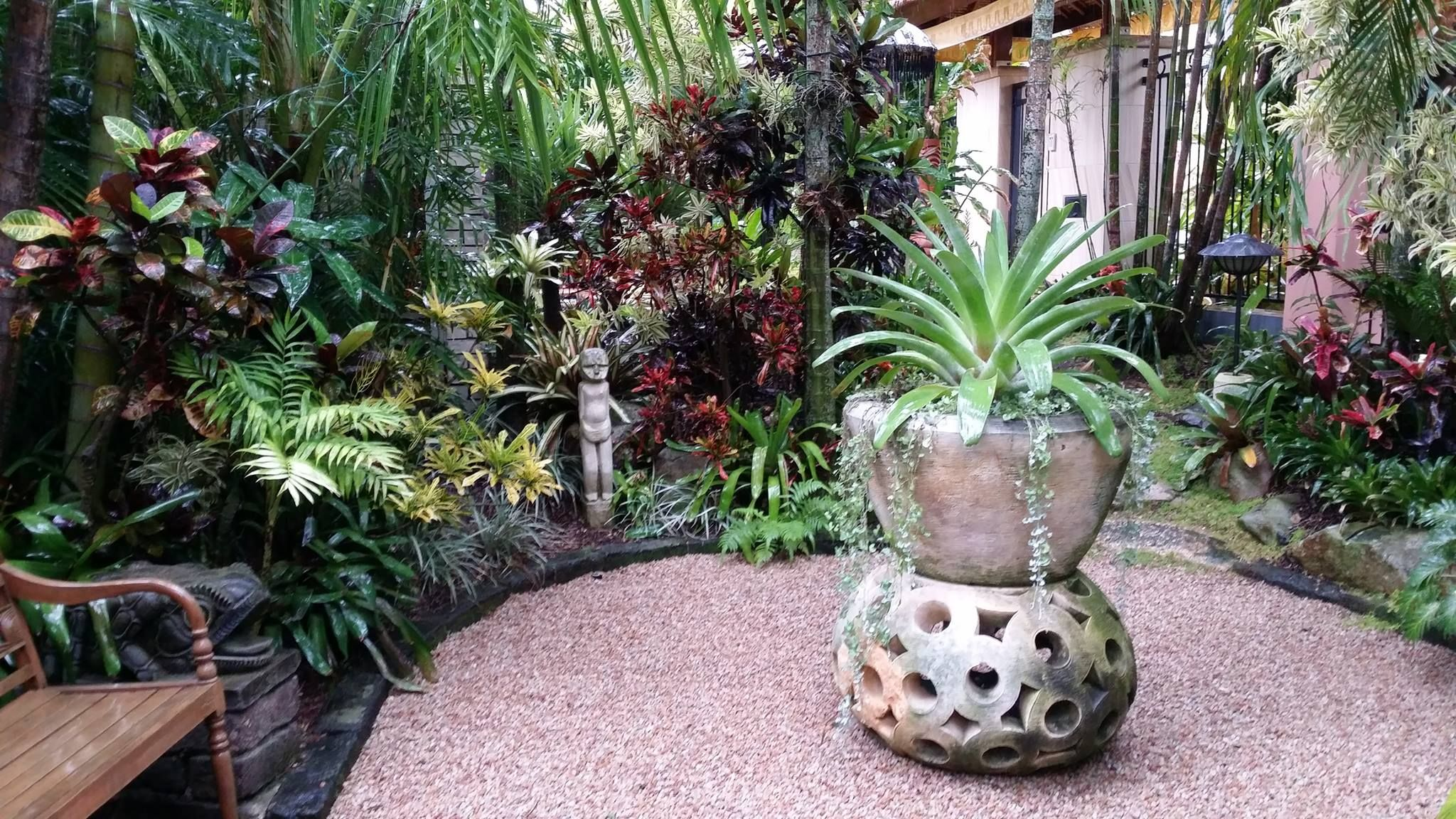 Rene Hundscheidt garden, Brisbane. Photo P. Saunders ...