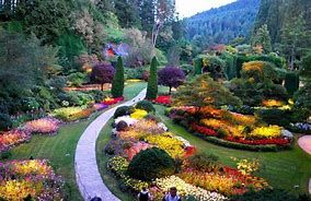 Image result for butchart gardens canada #butchartgardens