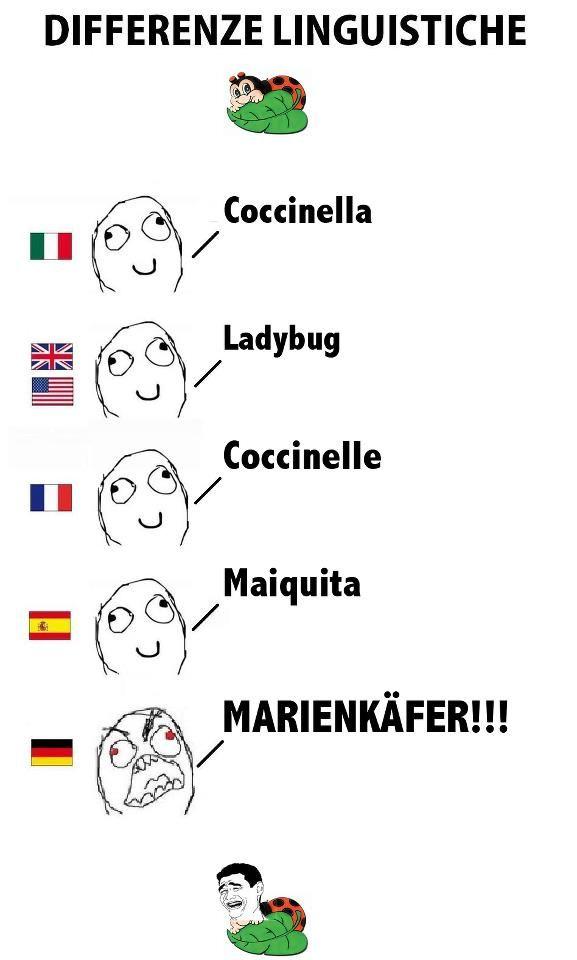 Differenze Linguistiche Barzellette Divertenti Battute