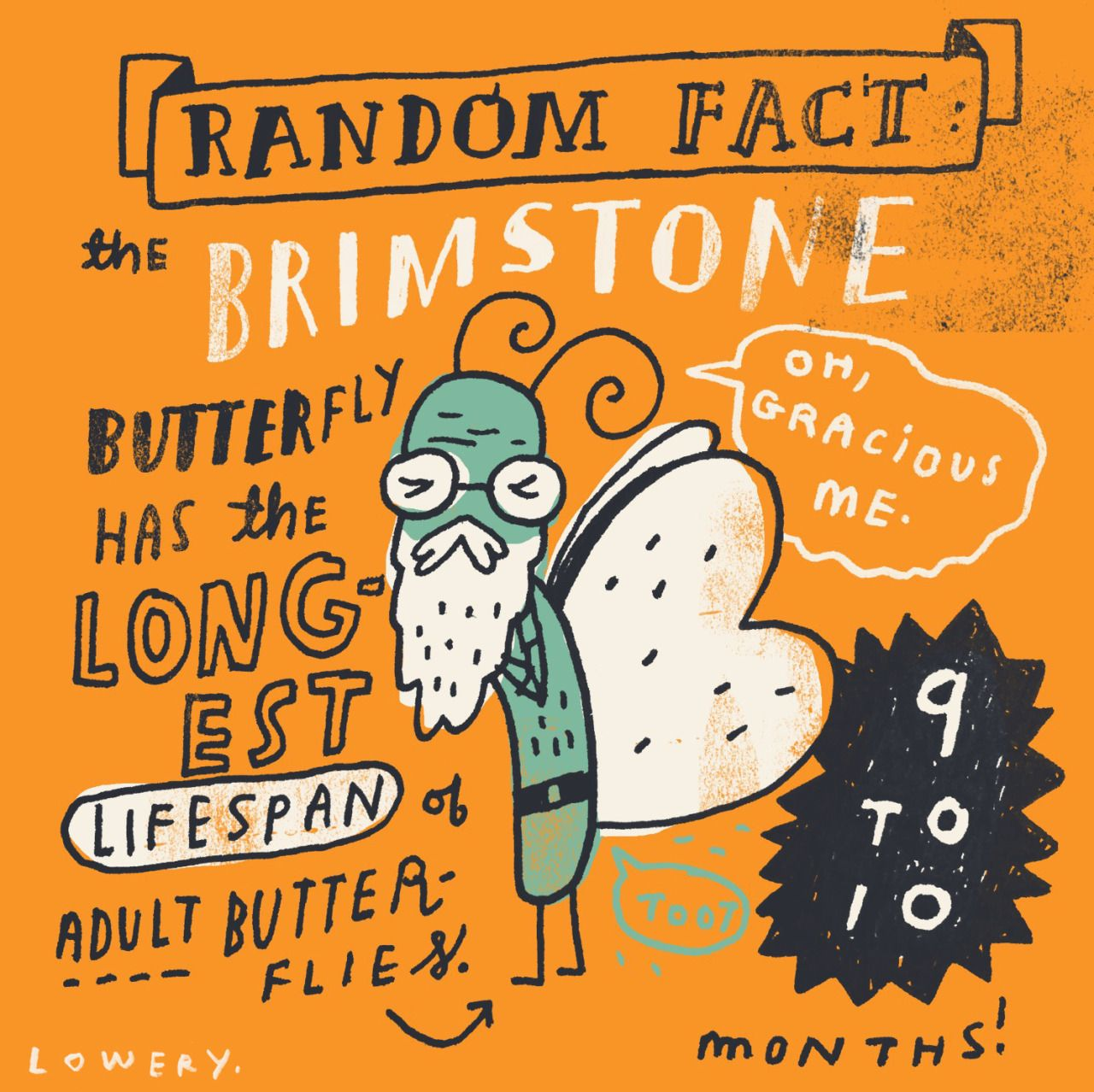 MIKE LOWERY random illustrated facts Supo