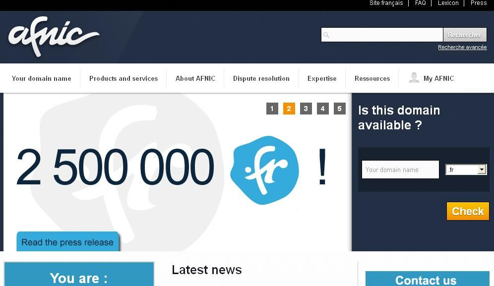 The French Council of State rules on the former legal framework for domain names