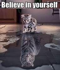 Believe In Yourself Kitten Tiger Reflection