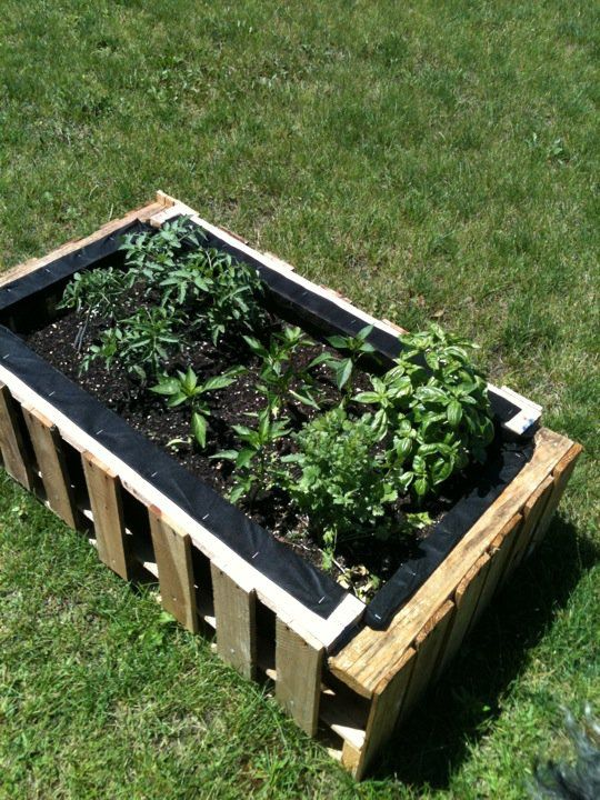 Use Recycled Pallets To Make A Raised Bed Garden Line The Inside