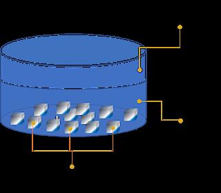 مكونات الهواء الأكسجين ثاني أكسيد الكربون بخار الماء آزوت نيتروجين هيدروجين ايقاظ علمي سنة سادسة علوم سنة سادسة سنة سادسة Lamp Shade Home Decor Decor