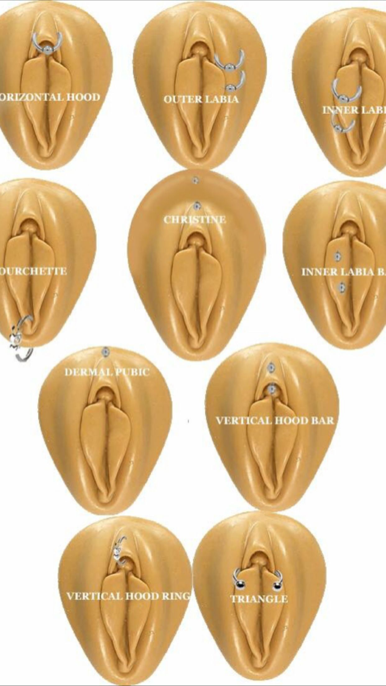 Different Ear Piercings Diagram Solar Energy How Does It Work Pin By Jelica Laraem On In 2018 Pinterest