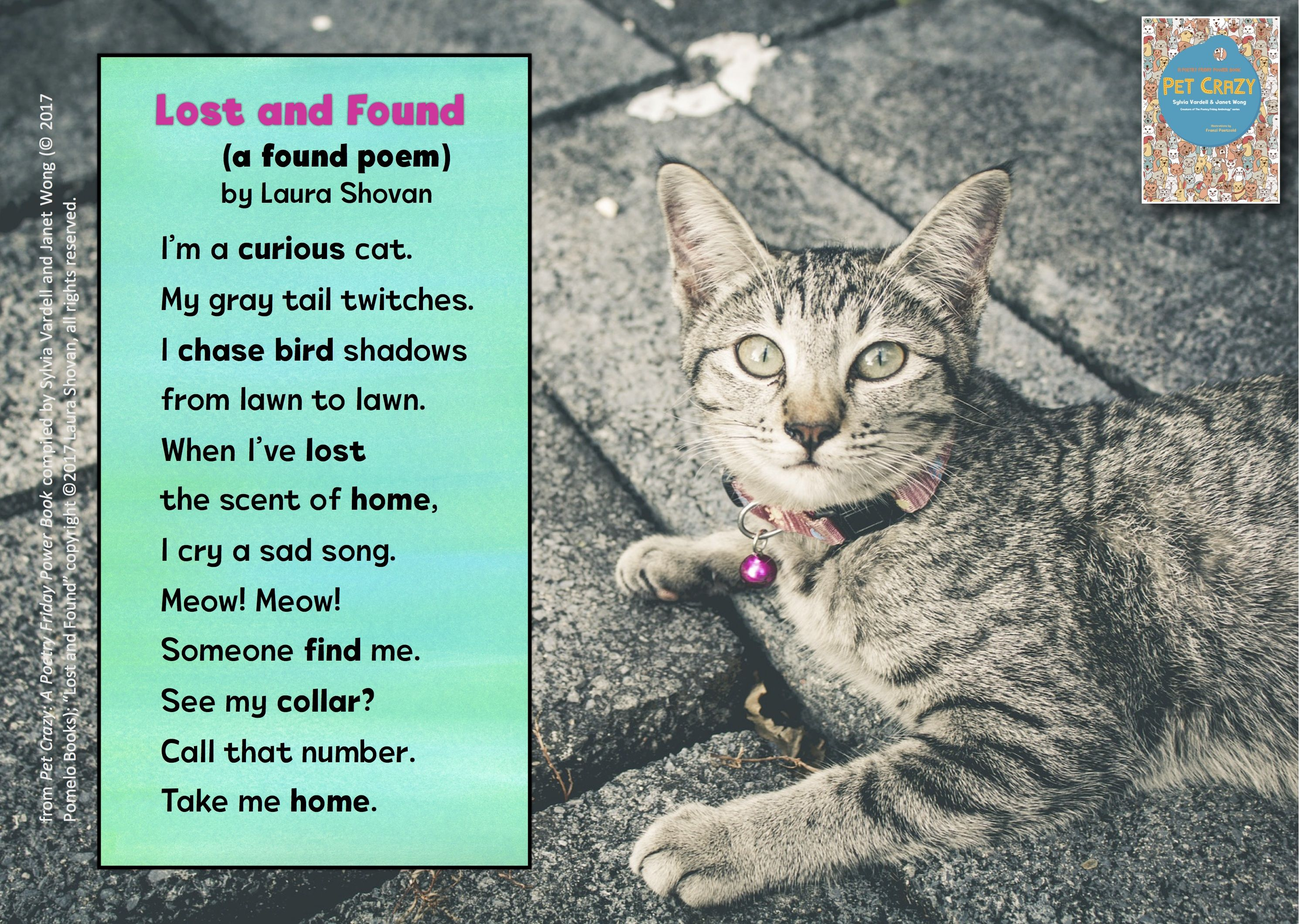 28 Poems about Animals and Pets ideas  animal poems, poems, kids