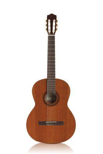 Yamaha Fs700s Small Body Folk Acoustic Guitar Bundle With Hard Case Strap Strings Picks Instructional Dvd And Polishi Guitar Cord Auditorium Design Guitar