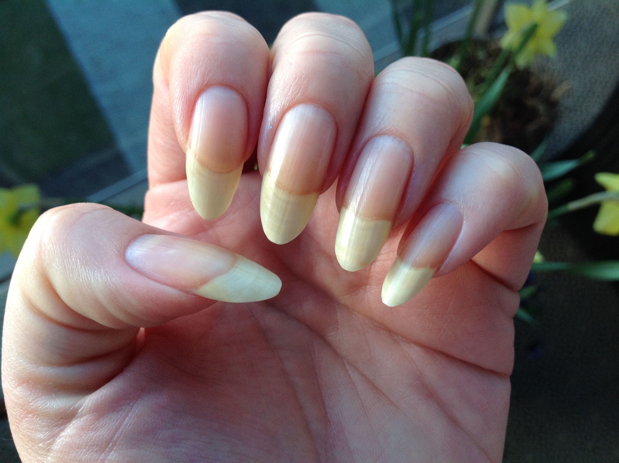 Pin by Sofie on Long beautiful nails | Pinterest | Natural nails ...