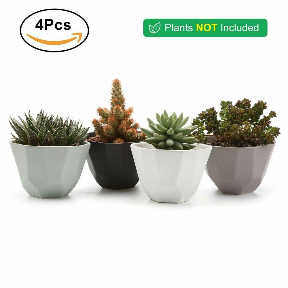 Pack 4 Ceramic Succulent Plant Flower Pots Geometric Semi Luster Surface 5 Inch Succulents Plants Su Ceramic Succulent Cactus Plant Pots Planting Succulents