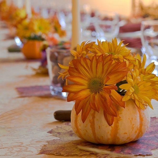 Pumpkin Panache. Pumpkin ideas all autumn long!