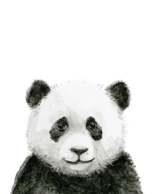 Baby Panda Watercolor Art Print by Olga Shvartsur #babypandas