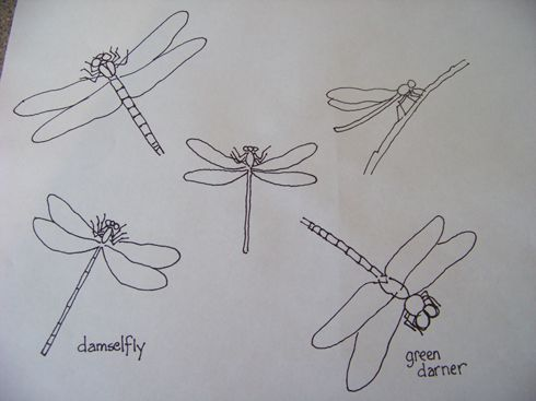dragonflies patterns for hand
