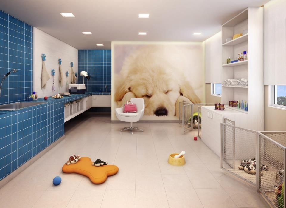 Cute grooming room. I like the mural and the dog pens