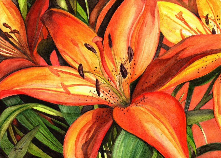 Tiger Lilies In 2019 Art Lily Painting Lilies Drawing