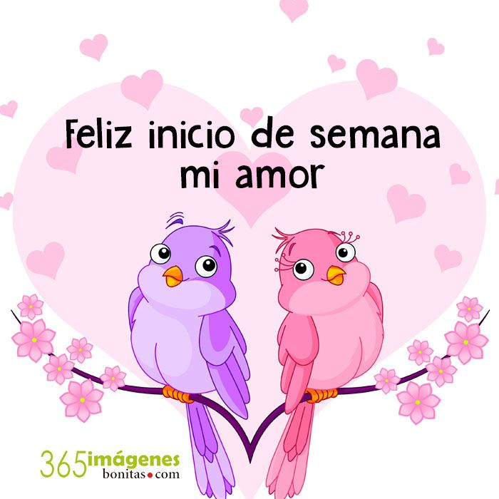 Imagenes De Amor Con Frases Romanticas Frases Citas Pinterest