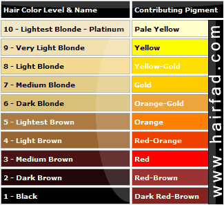 For Those Who Don T Understand What S Underline Pigment Here S A Chart To Look At Hair Color Chart Hair Color Hair Color Formulas