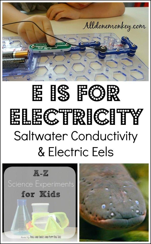electric eel coursework