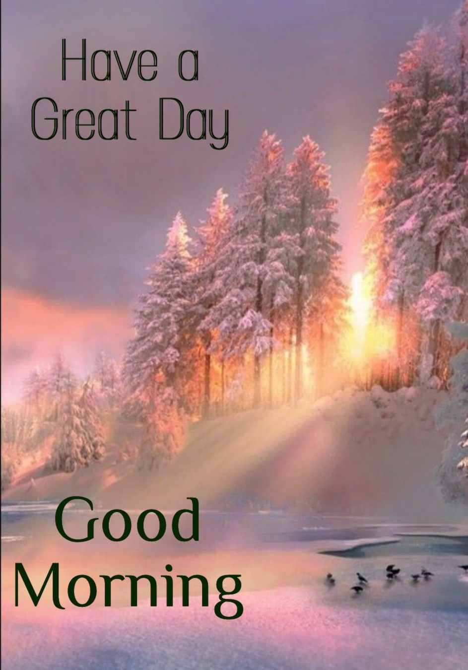 Pin By Ironjfarm On Morning Wishes Good Morning Nature Good Morning Friends Images Good Morning Winter Images