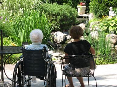 Diseño del paisaje: Jardines curativos para pacientes ...