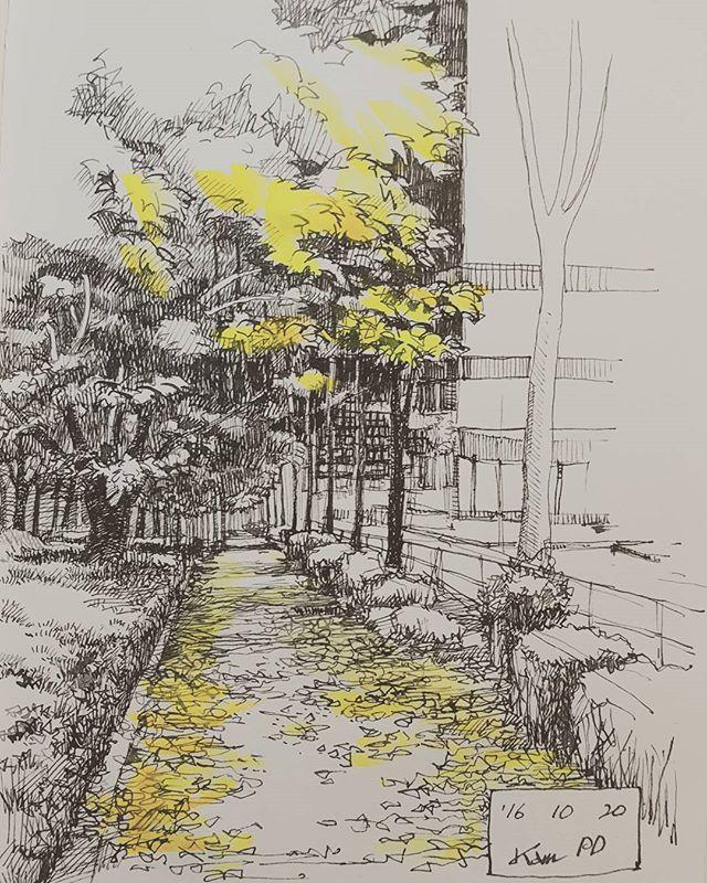 #seoul #mokdong #autumn #autumnleaves #dippen #drawing #sketch #sketchwalker #KamPD ##首尔 #木洞 #秋天 #红叶 #手绘 #素描 #画 #画画 #畫 #畫畫 #风景画 #風景画 #목동 #단풍 #드로잉 #스케치 #스케치워커 #딥펜
