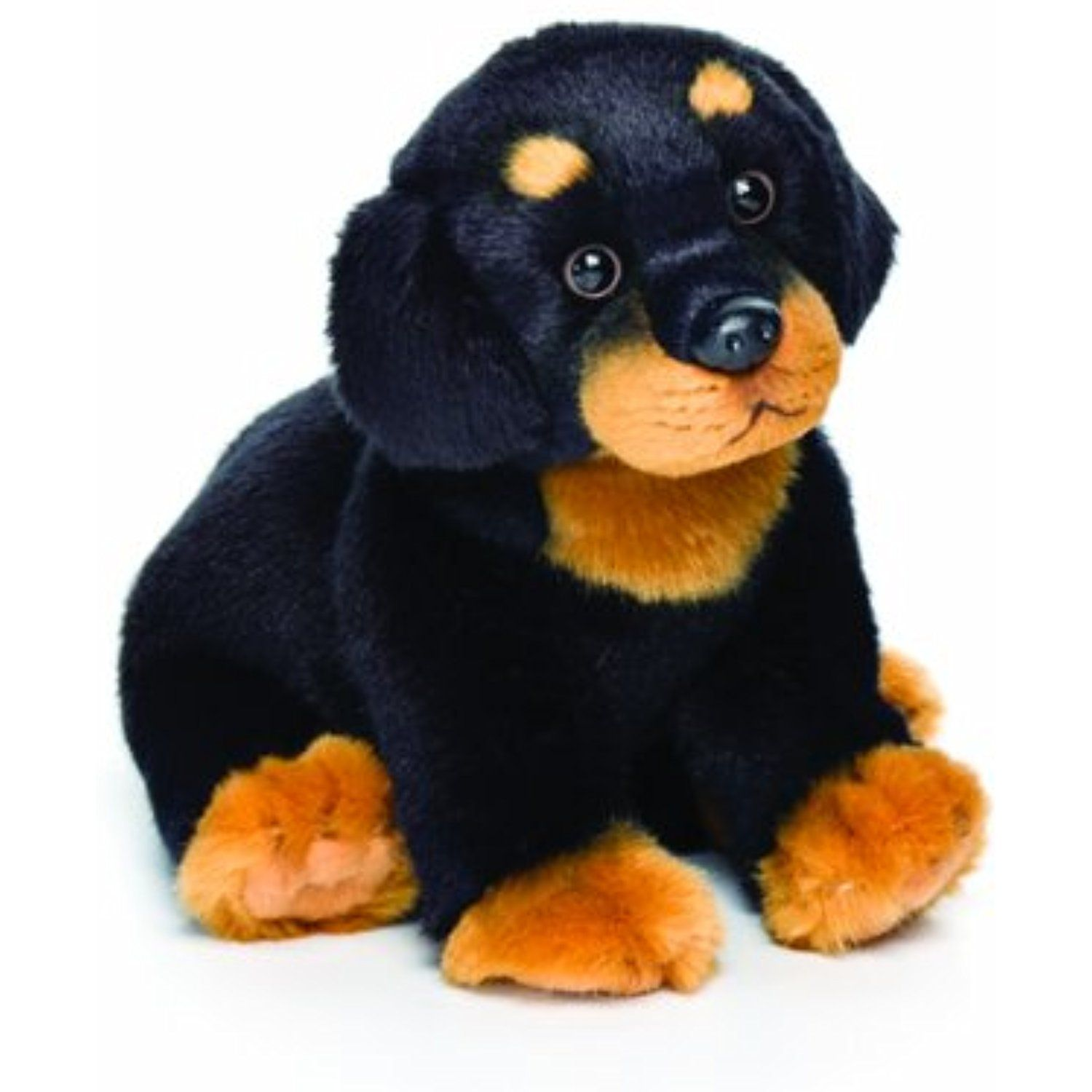 Rottweiler Puppies For Sale In Ohio Cheap 2021