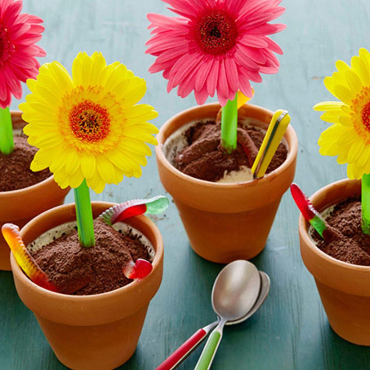 Ice Cream Flower Pot Desserts Recipe Ice cream flower