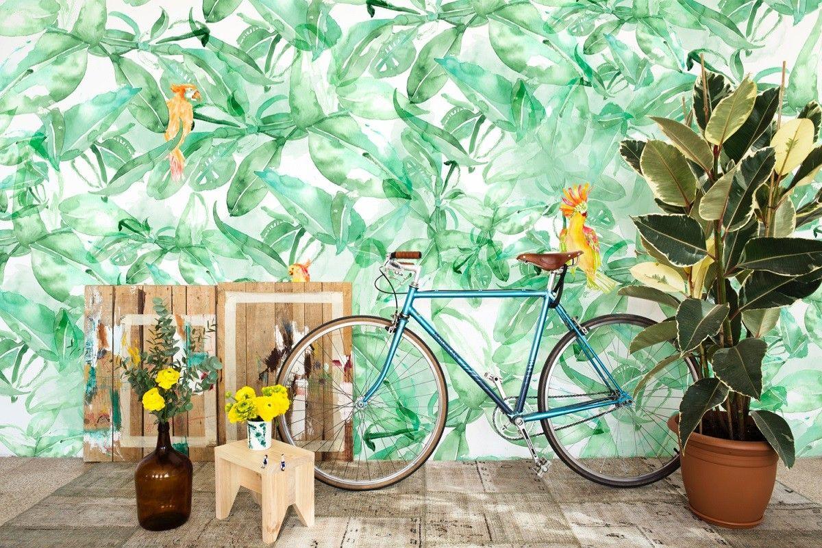 Zoek Papagaaien Tropische Decoratie Tropische Slaapkamers Behang